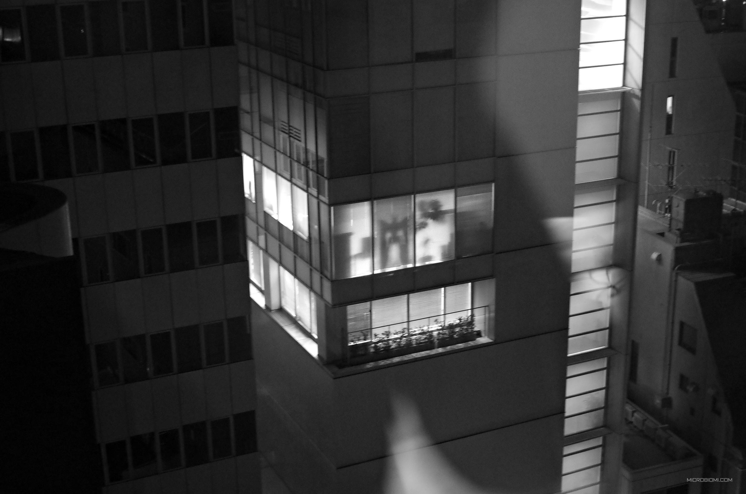 La nostra camera all'Hotel Monterey, Tokyo -  Akasaka, dava sul palazzo della Tohokushinsha Film Corporation (Patlabor)